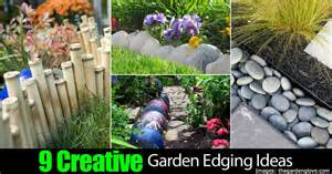 Creative Garden Edging Ideas -