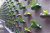 Pin by Megan Green on School Garden ideas | Pinterest