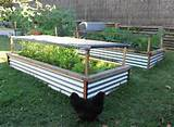 Most Excellent Raised Garden Beds 850 x 625 · 274 kB · jpeg