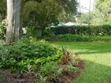 florida friendly landscaping