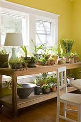 indoor garden home decor ideas pinterest