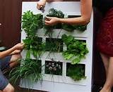 vertical garden outfitted with modular cubby holes source