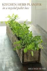 fascinating herb garden growing ideas 20 pics