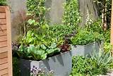 vegetable garden planter ideas