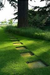 Creative Garden Path Amazing Ideas | Gardens | Pinterest