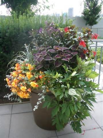 tropical landscape design pots http findanswerhere com outdoor
