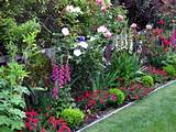 pretty | Garden ideas | Pinterest