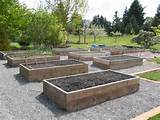 how-to-build-raised-vegetable-garden-woodworking-project-plans ...