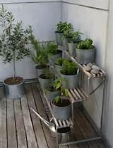 29 Ideen für Balkongestaltung - Den Balkon mit Pflanzen verschönern