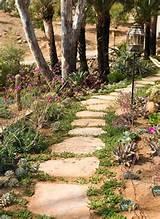 Pin by Lea Fletcher Faulks on Gardening & Landscaping- I | Pinterest