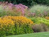 garden bed with perennials, grasses | Garden Ideas | Pinterest
