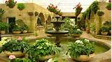 indoor garden idea green gardens pinterest