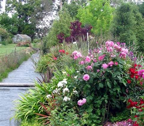 com mooseys garden tour willow tree garden garden flower border jpg