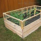 DIY Raised Bed (Removable) Pest Gate - Vegetable Gardener