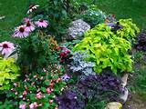 Perennials Flowers Perennial Flower Garden Design Ideas