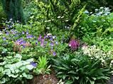 Passionate Gardens, Garden Design, Gardens Idea, Perennials Gardens ...
