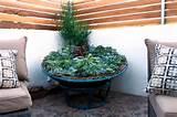 Repurpose Garden Ideas - Contemporary - Landscape - san diego - by ...