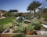 realize beautiful desert landscape ideas design ideas decor makerland