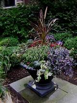 Autumn planter ideas | Garden Ideas | Pinterest