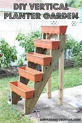 vertical garden idea backyard ideas pinterest