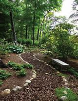 woodland garden ideas woodland gardens path landscape garden paths