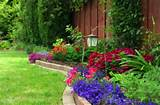garden along the fence gardening pinterest
