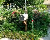 Mailbox Landscaping Ideas: Gardening at the Curb