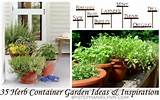 herb container gardens pots planters saturday inspiration ideas