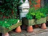 40 Inspiring DIY Herb Gardens » Upcycled Container Herb Garden (via ...
