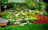 landscape gardeners gardening pinterest