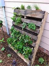 Garden Lovely Vertical Gardening Ideas Modish Pallet Gardening