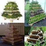 Vertical container garden | gardening | Pinterest
