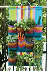 Jardim Vertical - Dicas Para um Novo Jardim 2012