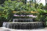 water garden waterfall ideas