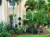 Front Landscape & Pool Waterfall - tropical - landscape - tampa ...