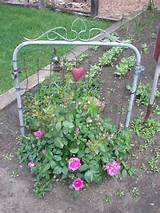 Neat Idea, Garden Ideas, Climbing Rose, Trellis Ideas, Gardening Ideas ...