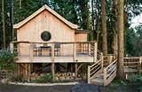 Tiny Woodland Cottage