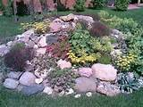 Rock Garden Design Tips 15 Rocks Garden Landscape Ideas Ed8SXn4V