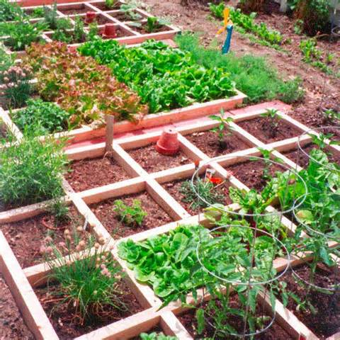 mountain gardening small space vegetable gardening for small space ...