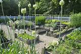 Planning Ideas for your Vegetable Garden #springfever Beautiful ...