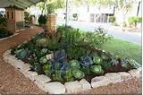 Edible Landscaping Ideas at the 2011 San Francisco Garden Show ...