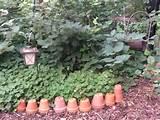 creative garden edging ideas image search results