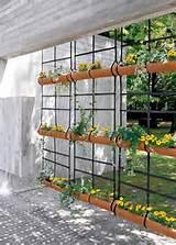 Imagem 03 – Jardim suspenso com vaso fixo na parede de madeira
