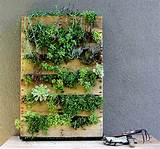 ... Ideas Images. Simple Vertical Garden with Recycled Palette Ideas