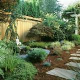 Low-Maintenance Landscape. This is what I need-the weeds this year ...