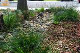 surge pack pictures of landscaping dry river beds landscape