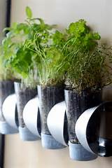 indoor herb garden on an ikea wine rack curbly