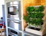 indoor home vertical garden design ideas aria tabletop evo organic