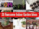 ... the tutorial >> 20 Awesome Indoor Garden Ideas > More Creative Ideas