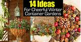 14 ideas for cheerful winter container gardens